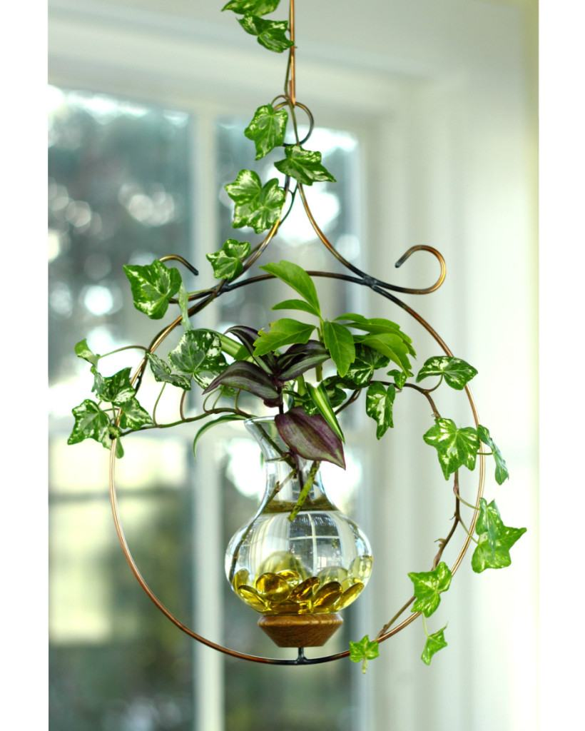 Indoor Plants Grown In Water: Circle Hanging Water Garden™ [Live Plants Included