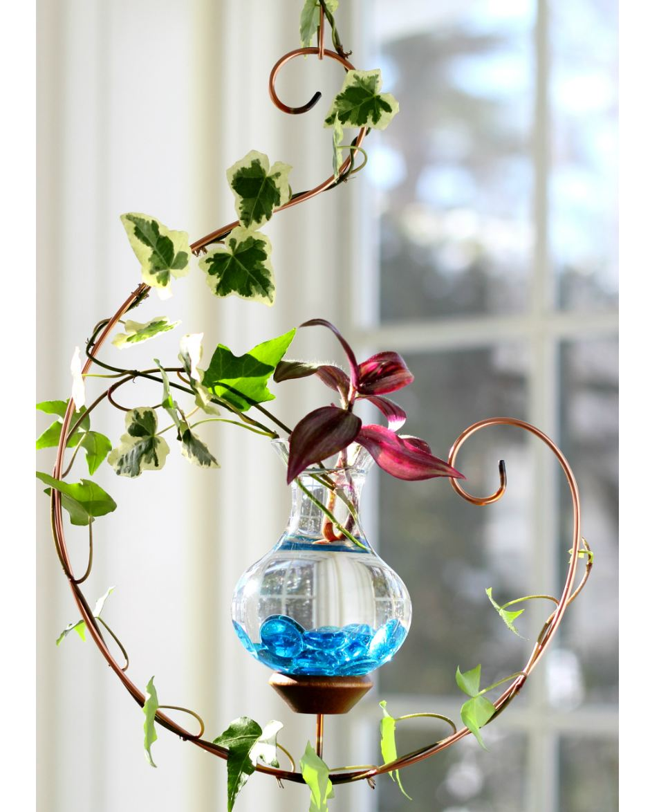 Water Gardens: Harmony Hanging Water Garden [Live Plants Included