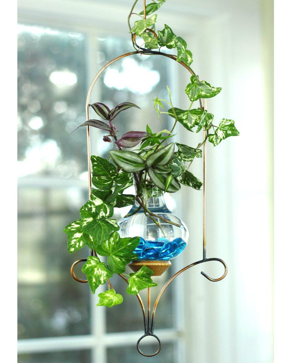 Water Gardens: Lantern Hanging Water Garden