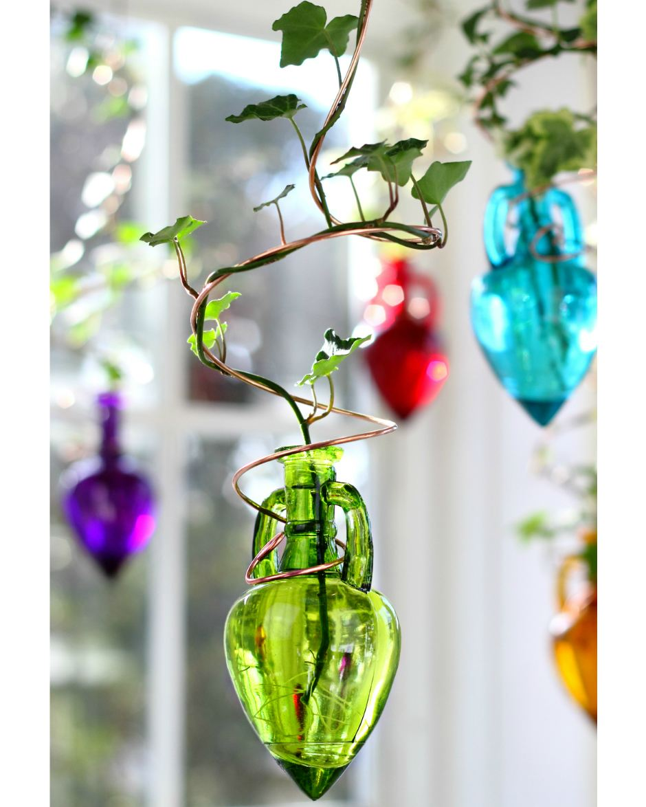 Spiral Hanging Water Garden Green Live Plants Included