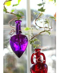 SPIRAL_PURPLE_RED_PR_72_SIZED