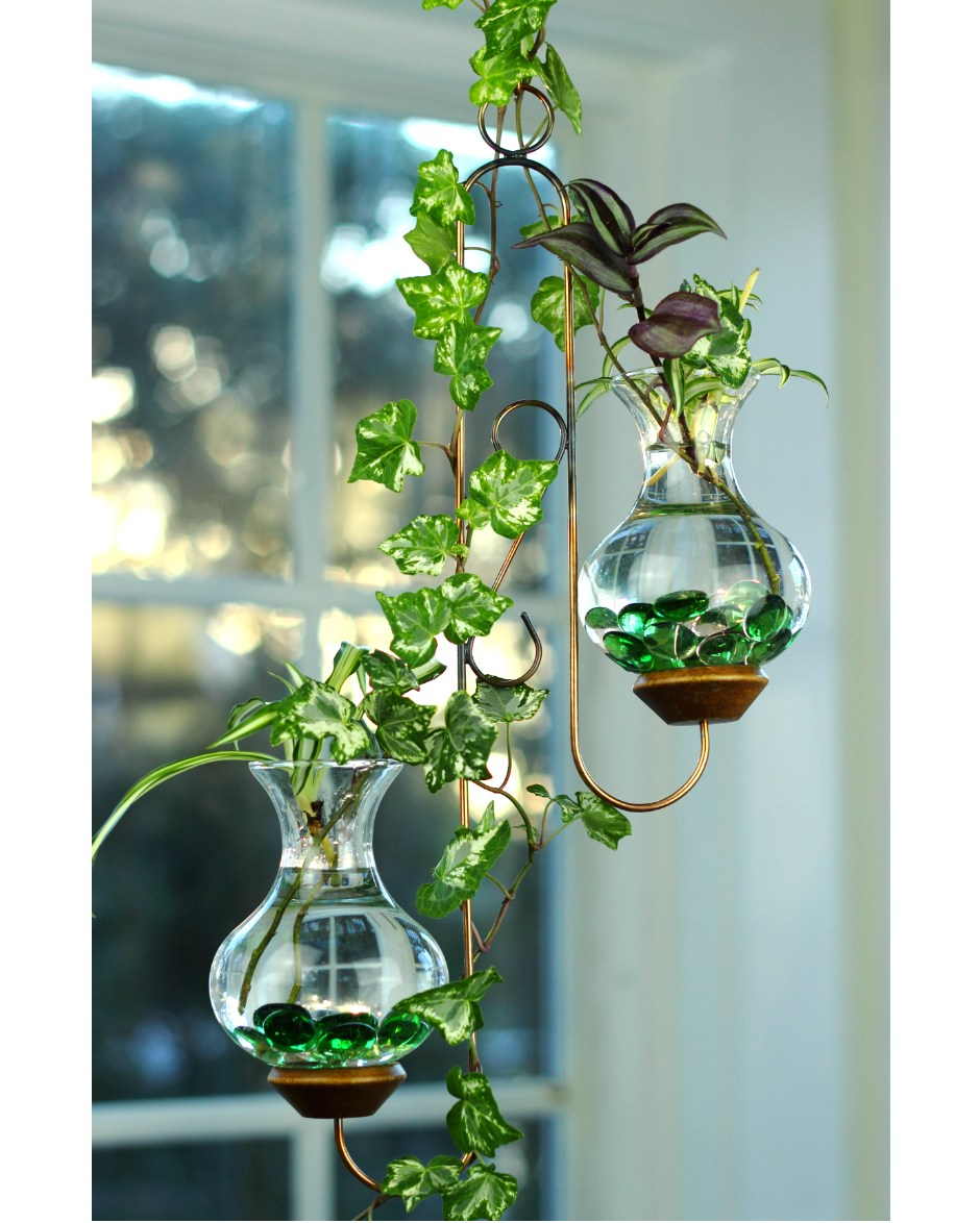 Twin Hanging Water Garden Live Plants Included