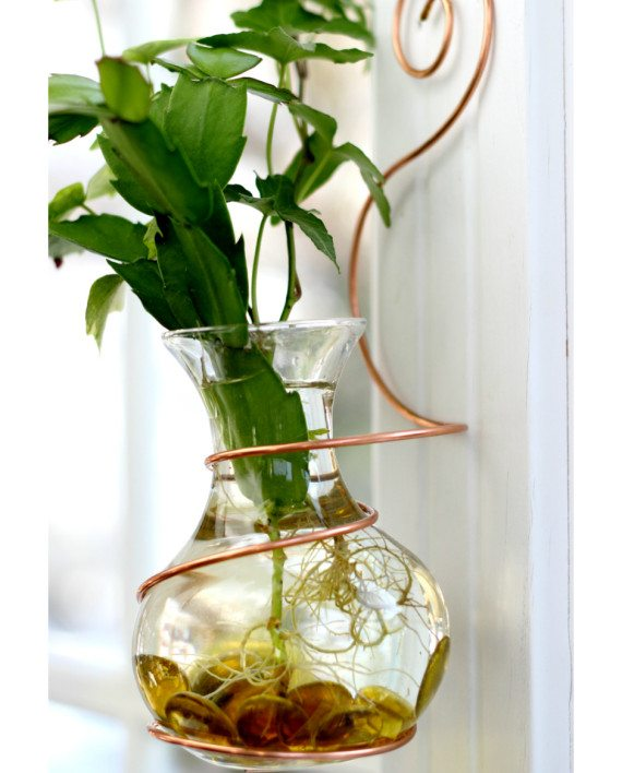 Wall Coil Hanging Water Garden Live Plants Included
