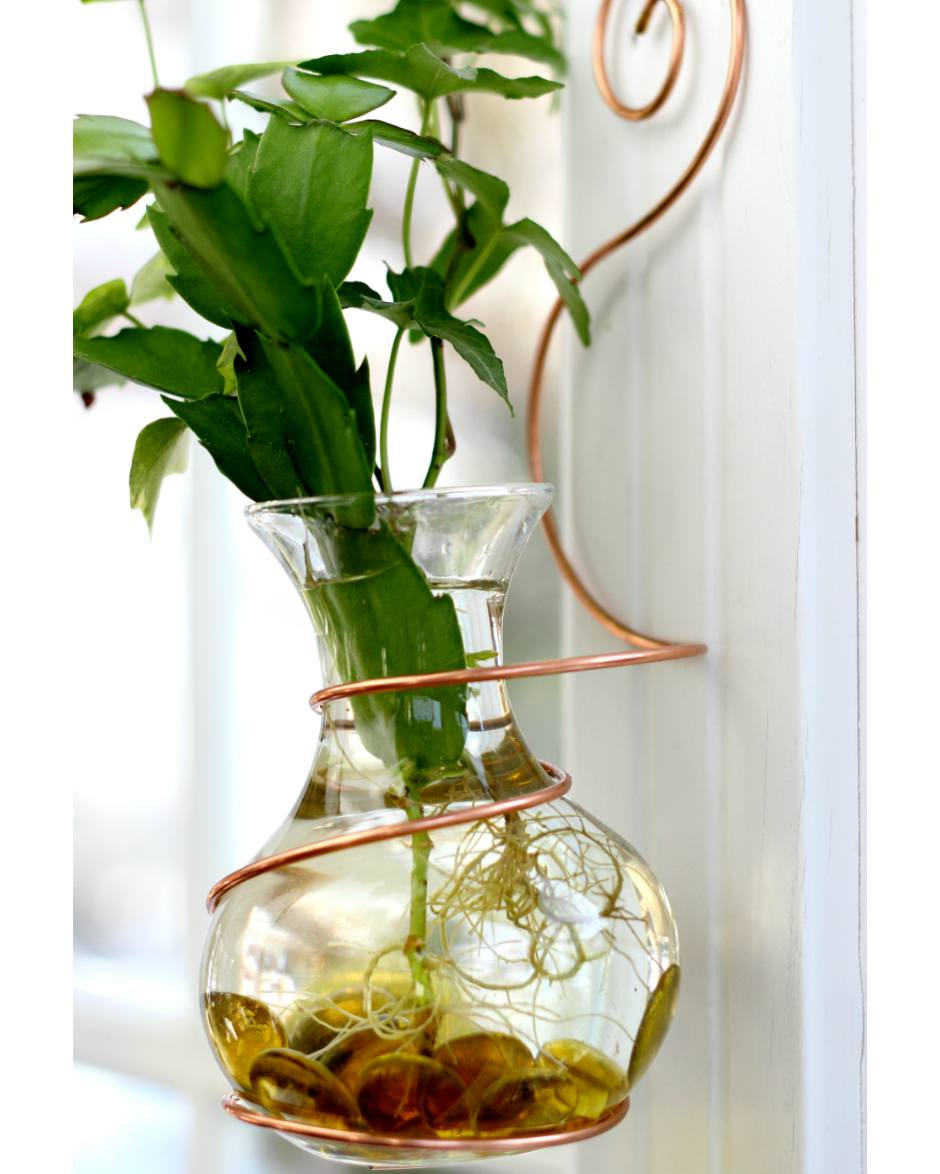 Wall coil hanging water garden live plants included vermont wall coil hanging water garden live plants included vermont nature creations reviewsmspy