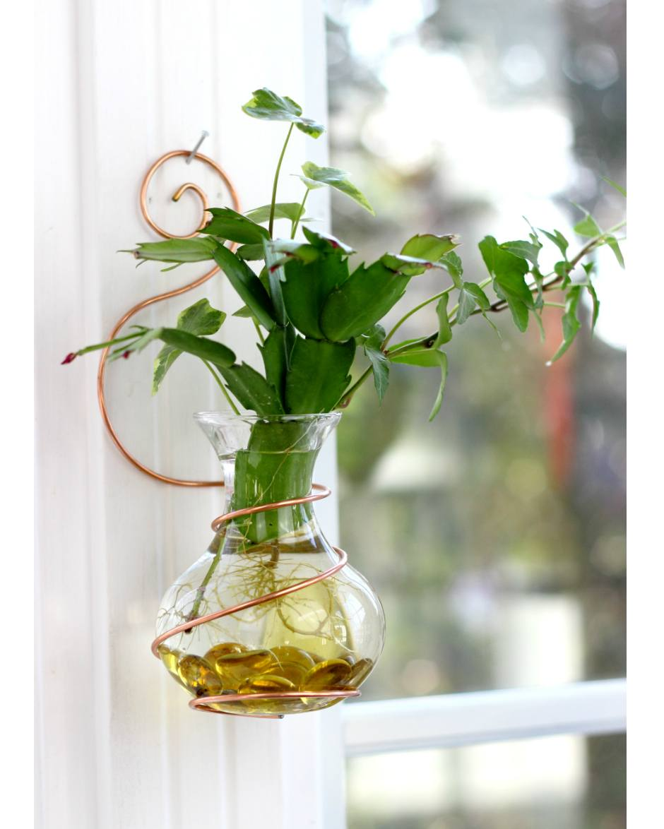 Wall Coil Hanging Water Garden™ [Live Plants Included