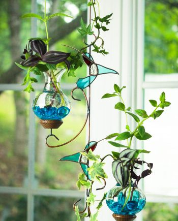 hanging water garden teal hummingbird
