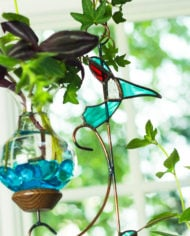 teal hummingbird1