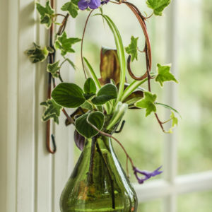 Limited Edition Mini Wall Mount with Teardrop Vase Sage